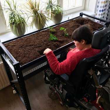 Moestuin vanuit rolstoel