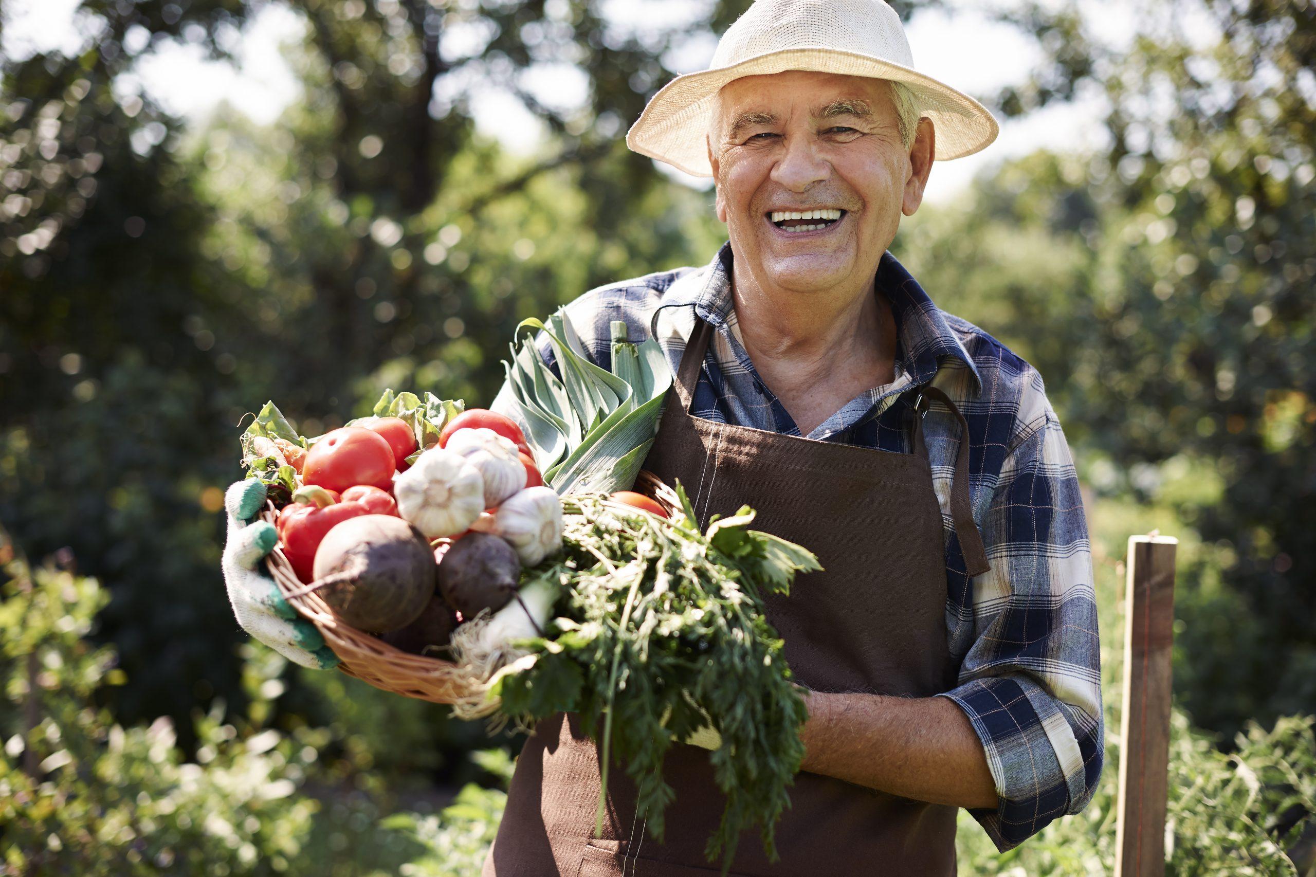 Gezond groenten kweken