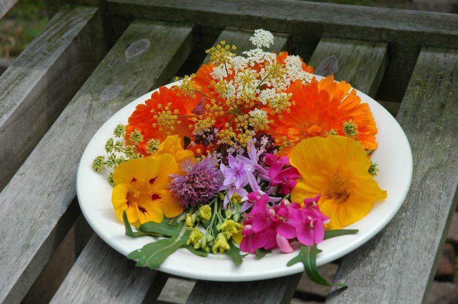 Bloemen uit een moestuinbak